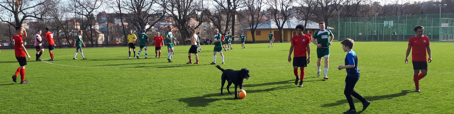 PIBFAL – Prague International Biweekly Football Amateur League